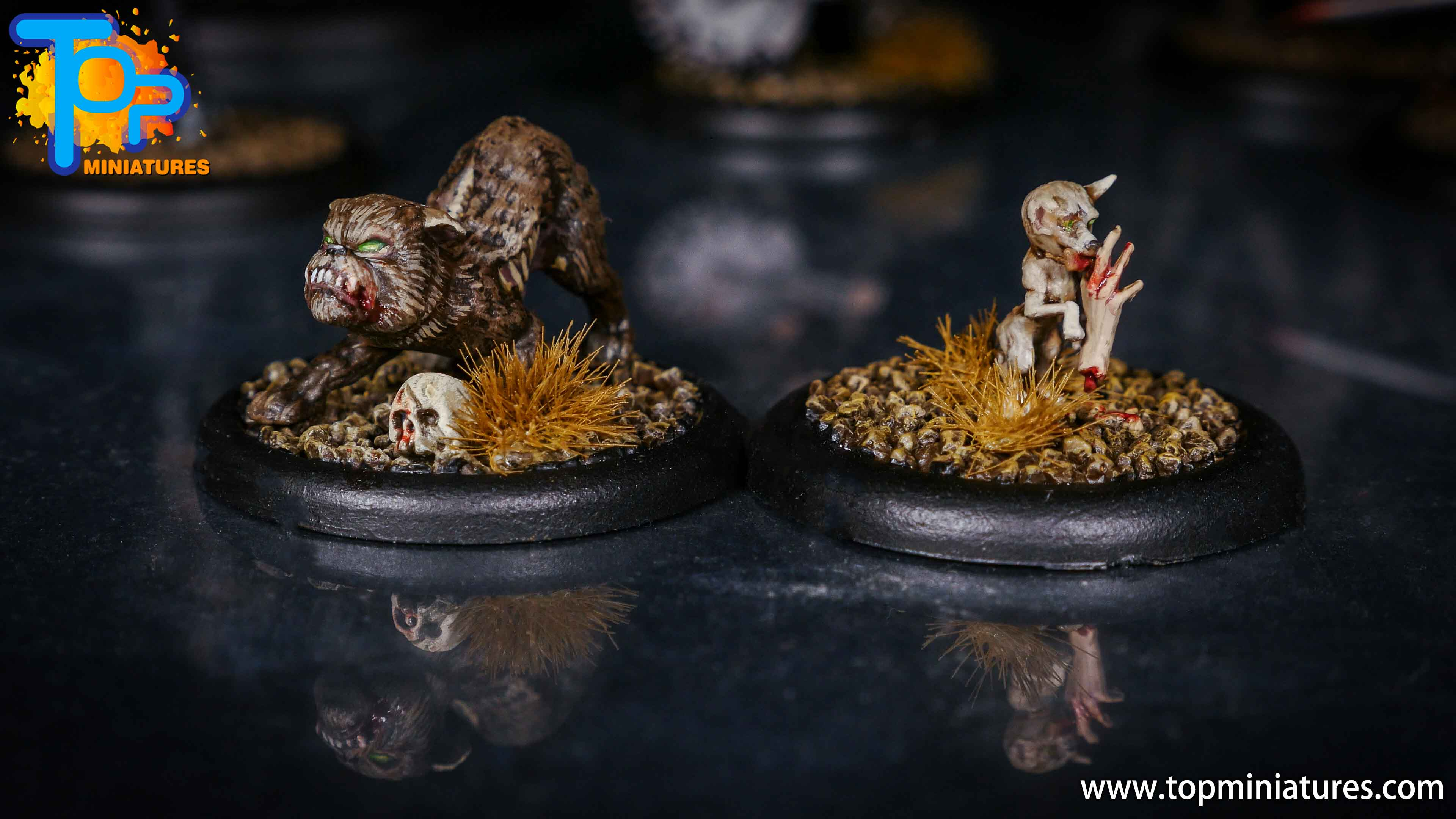 Malifaux canine remains zombie chihuahua (2)