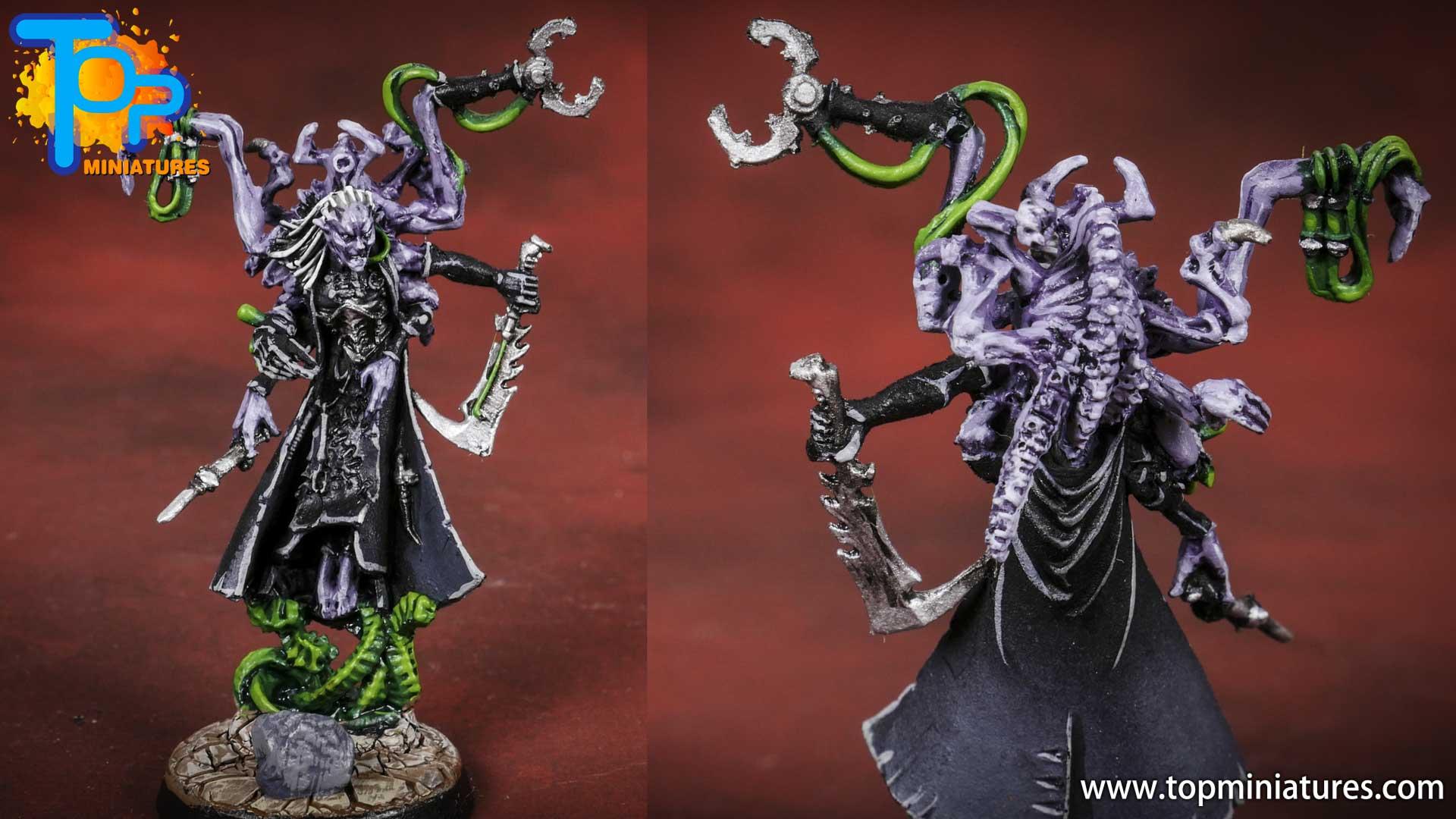 dark eldars painted urien rakarth (2)