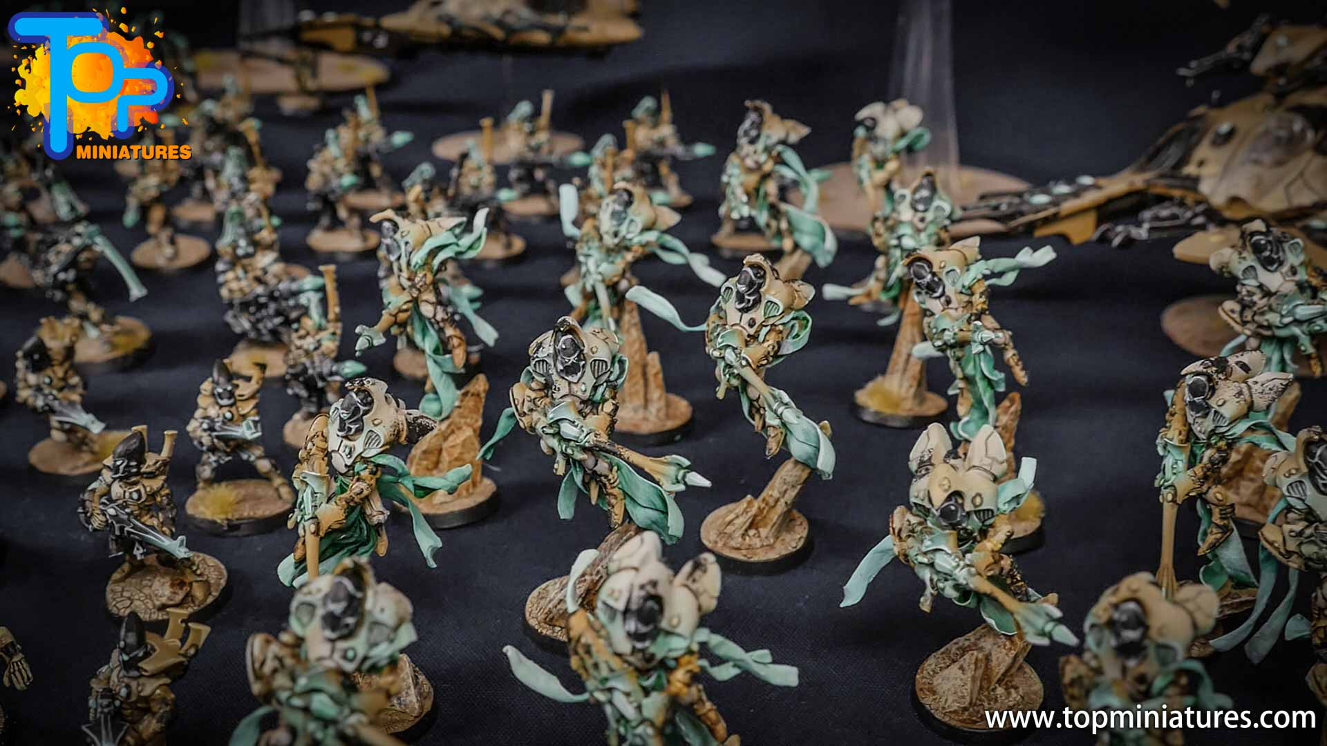 eldar painted huge army (1)