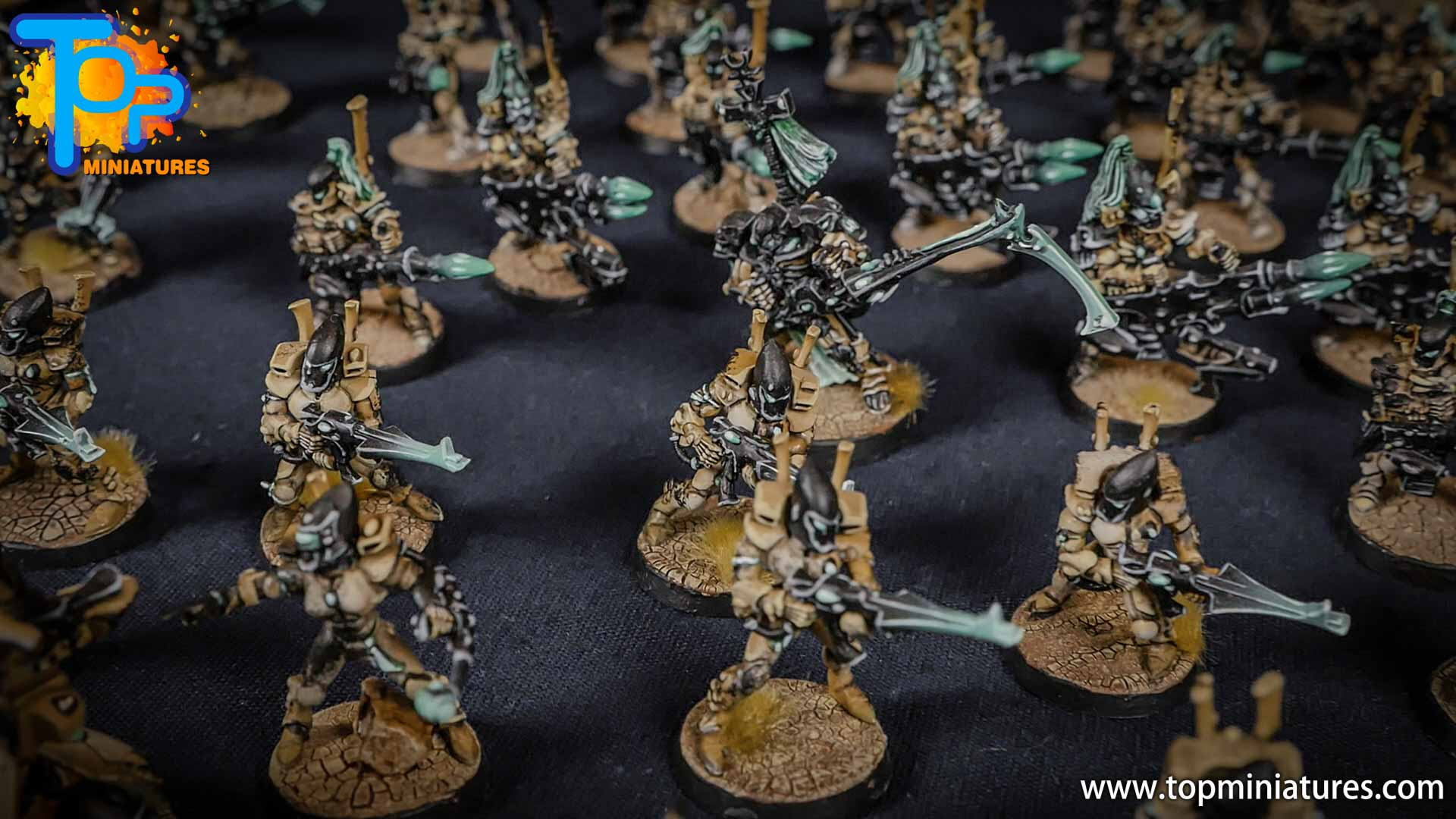 eldar painted huge army (2)