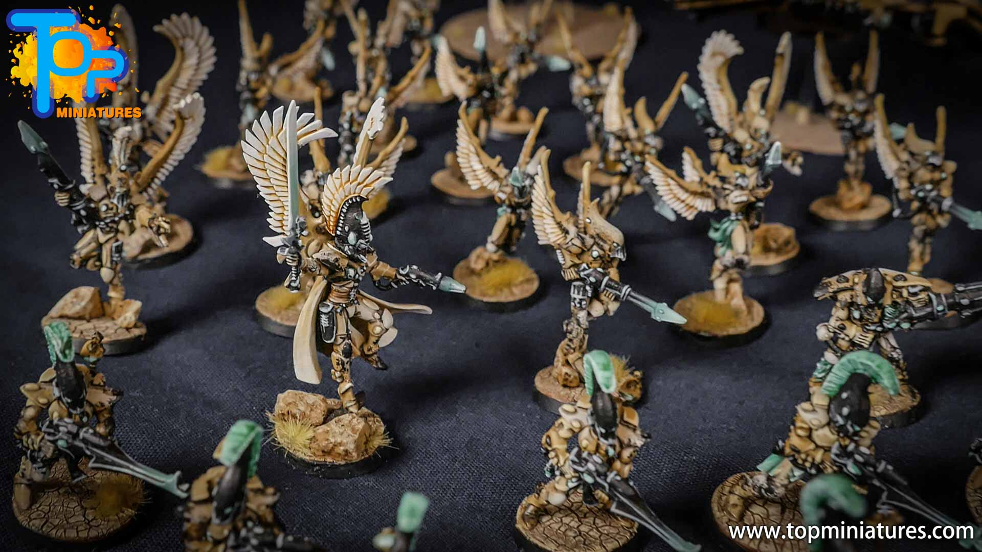 eldar painted huge army (3)