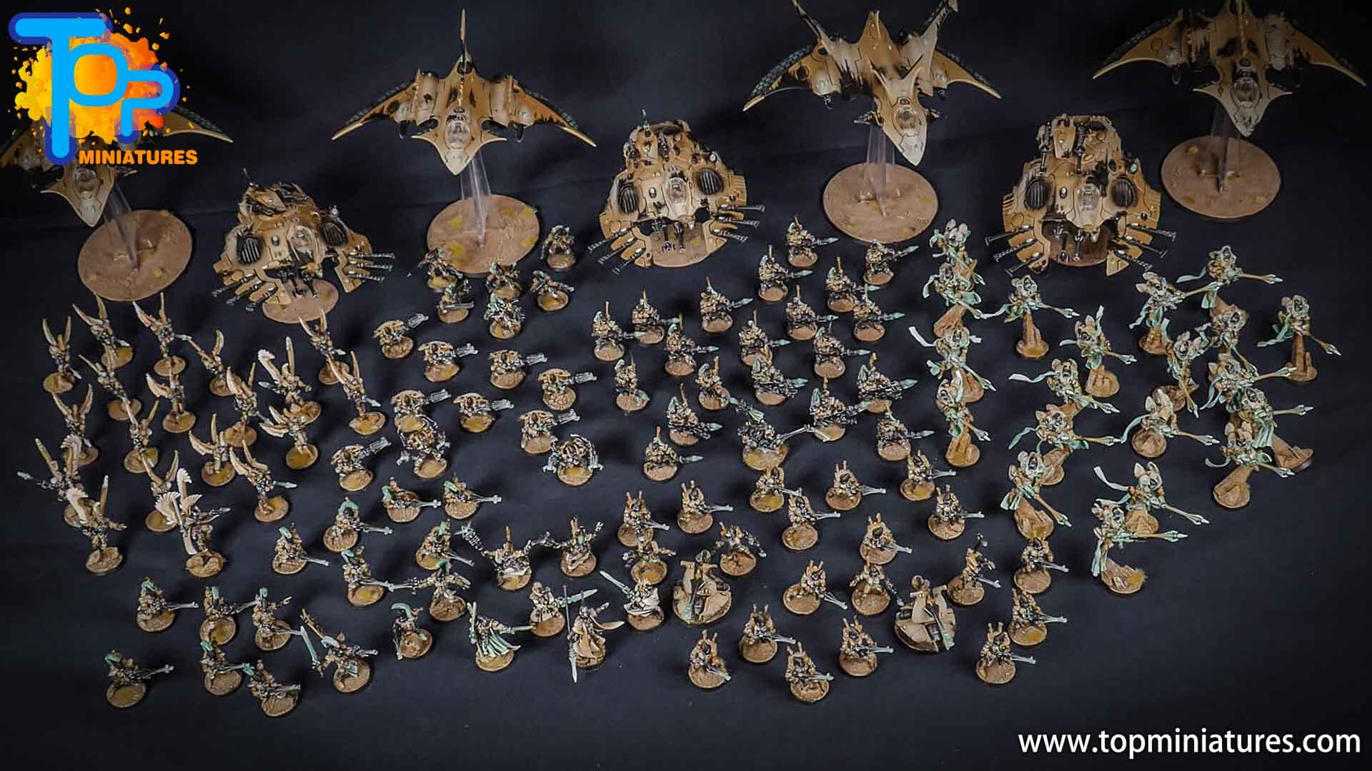 eldar painted huge army (4)