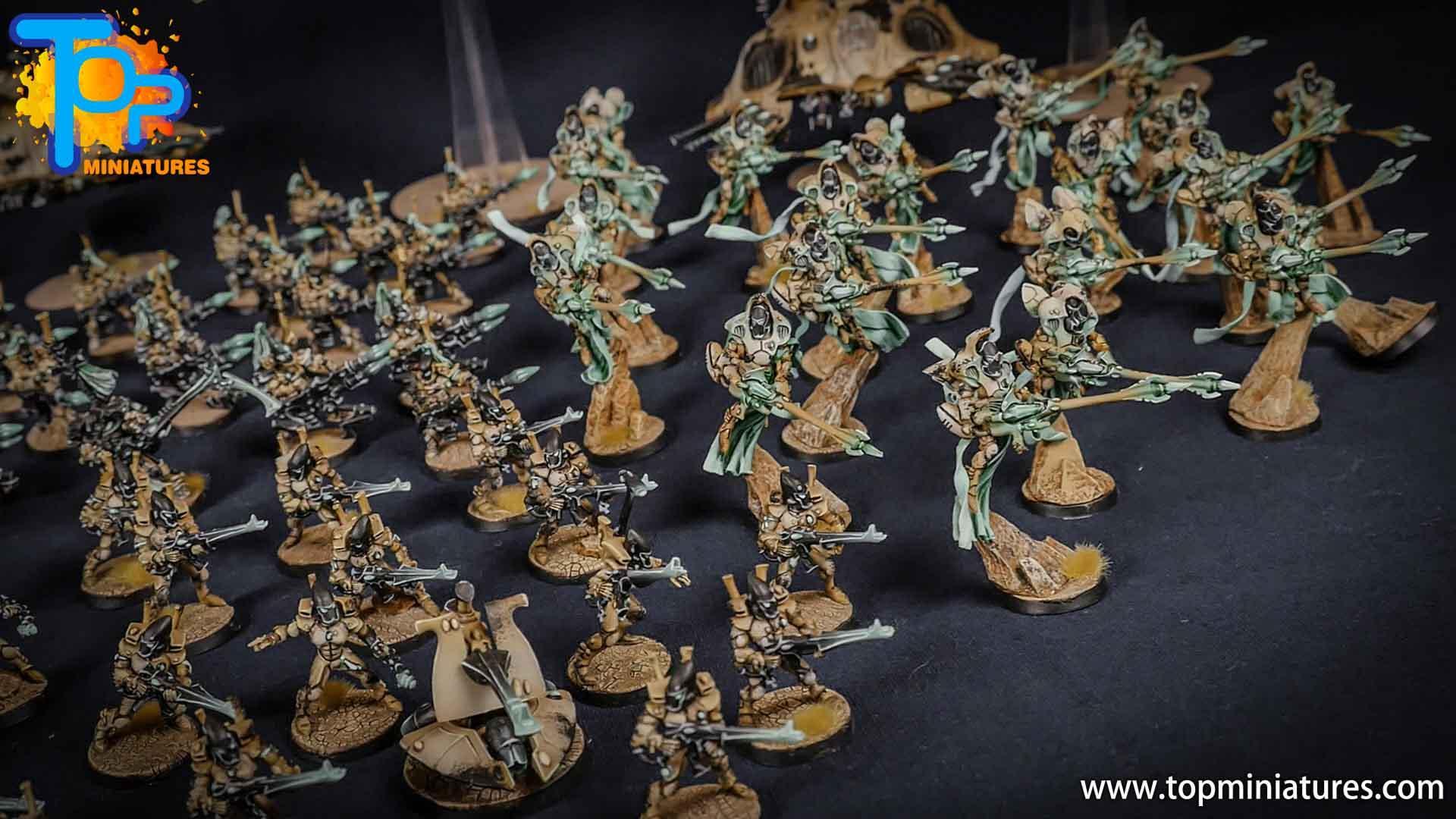 eldar painted huge army (5)