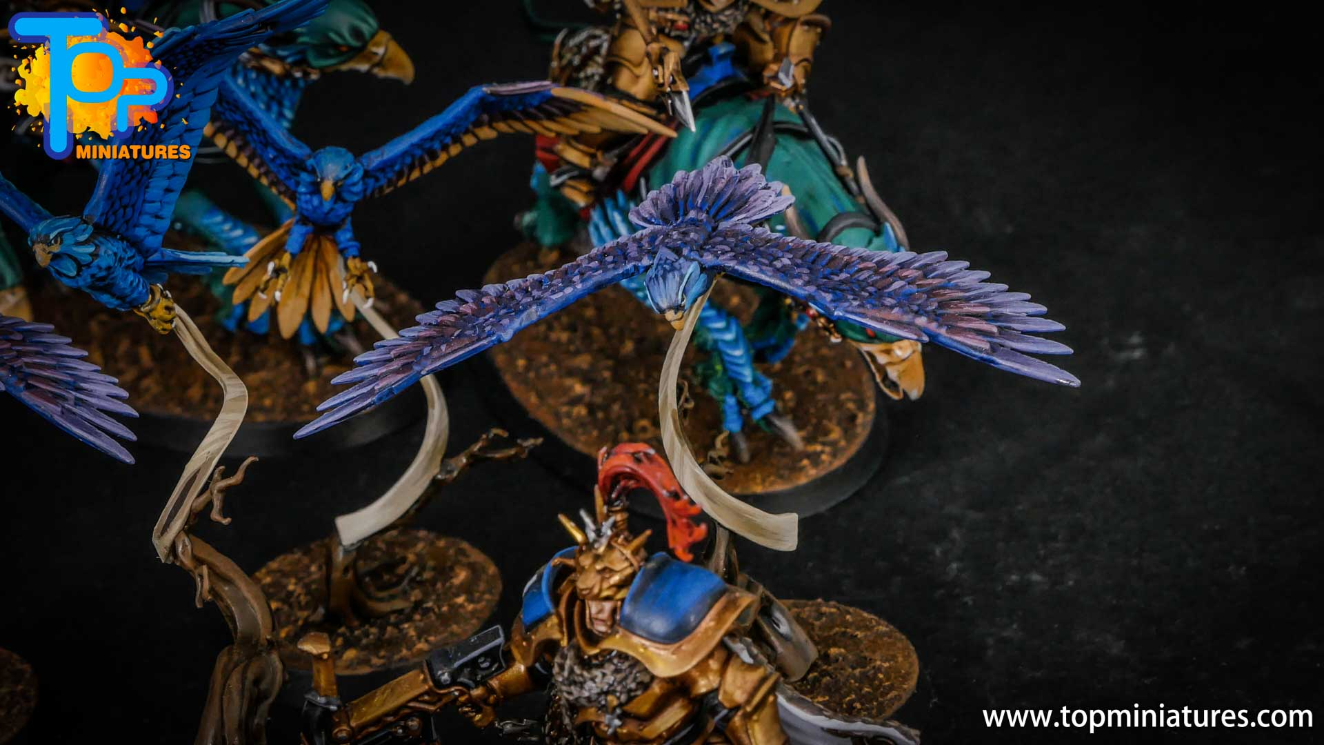 stormcast eternals painted aetherwings (3)