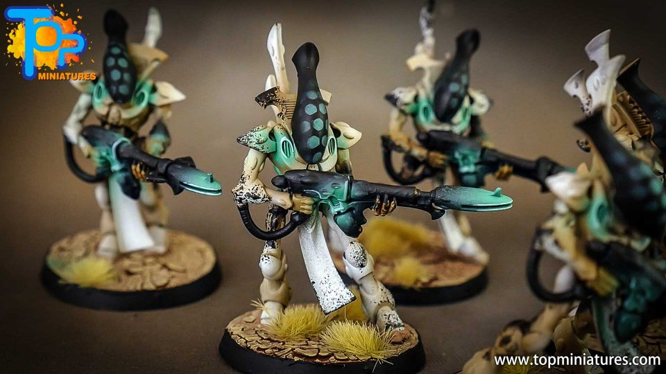Eldar Ghostwalkers