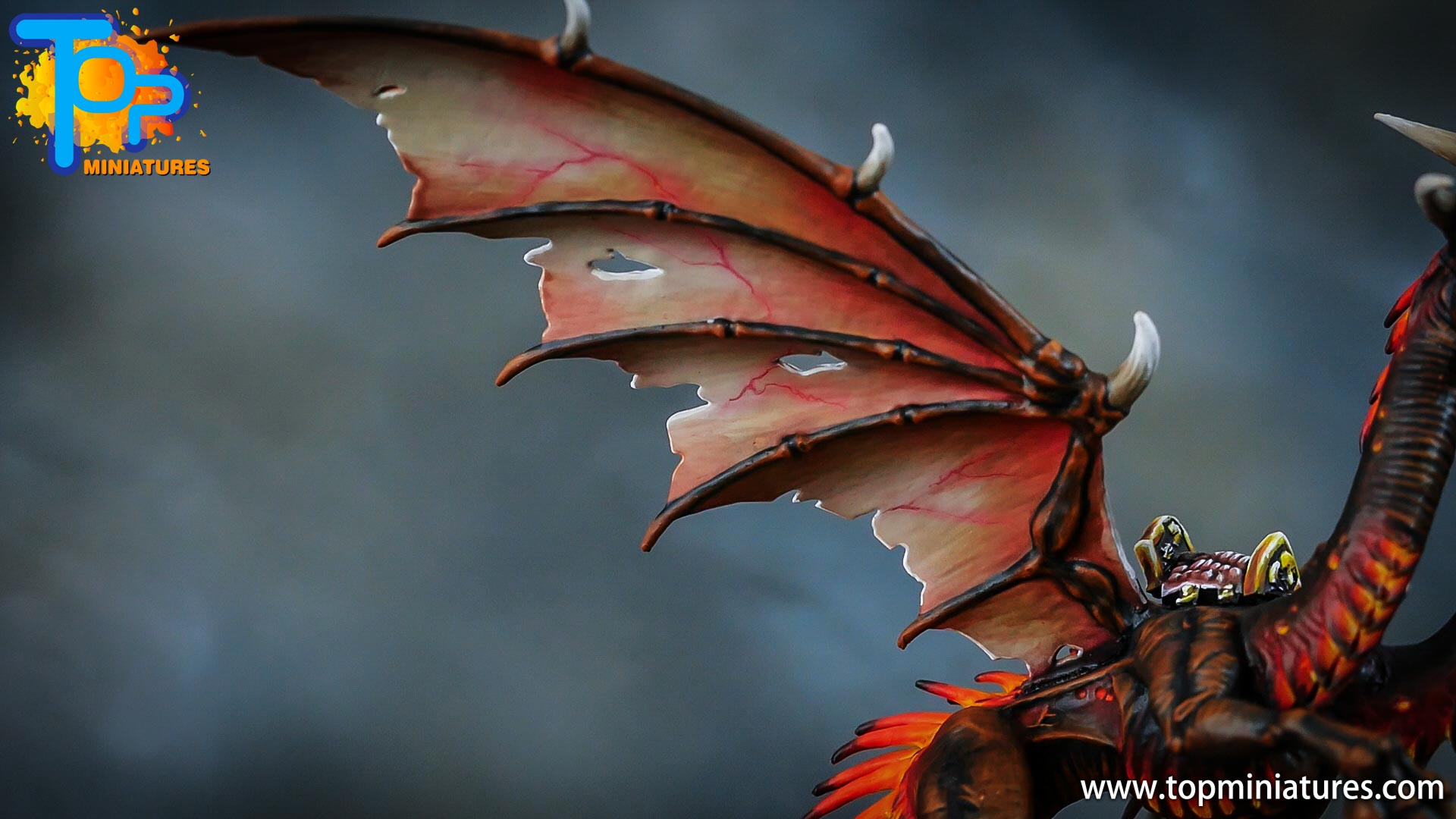 age of sigmar painted chaos dragon (13)