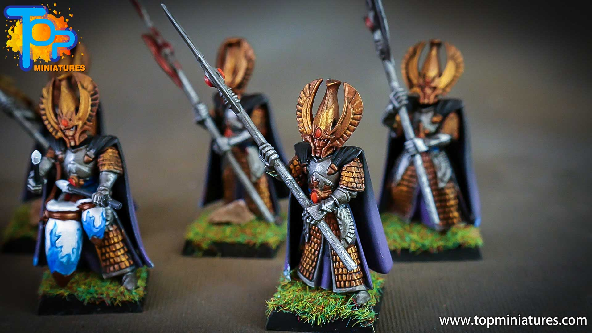 high elves painted phoenix guard (2)