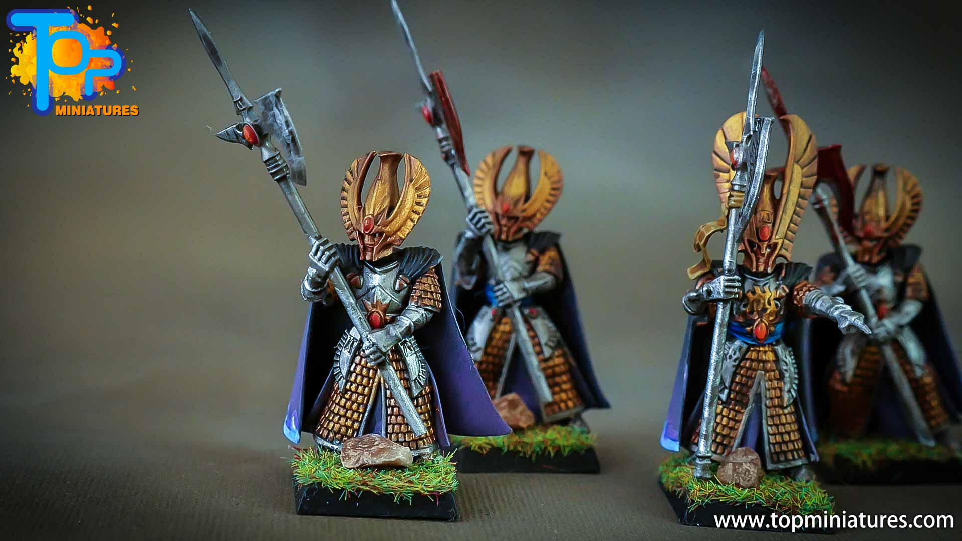 high elves painted phoenix guard (4)