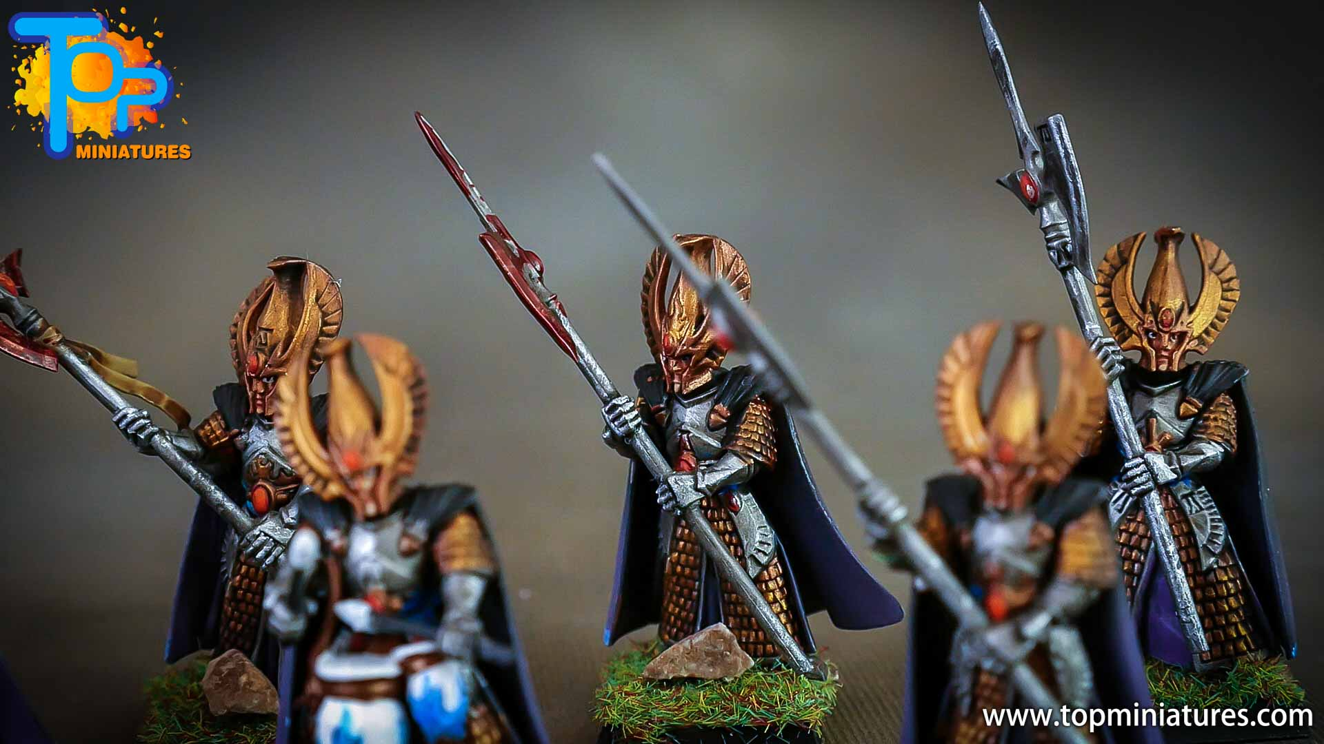 high elves painted phoenix guard (5)