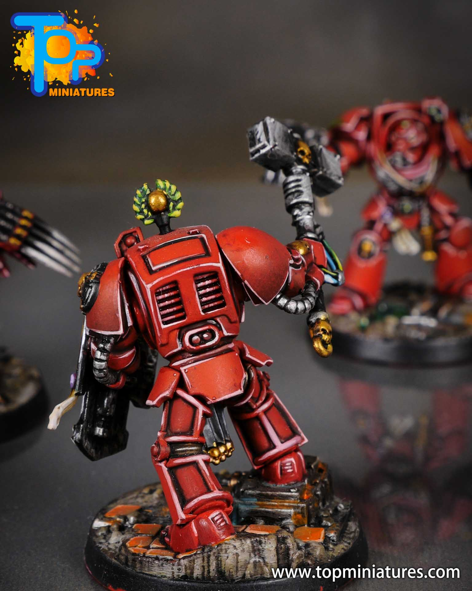 Space Marine Heroes - Blood Angels Terminators (11)