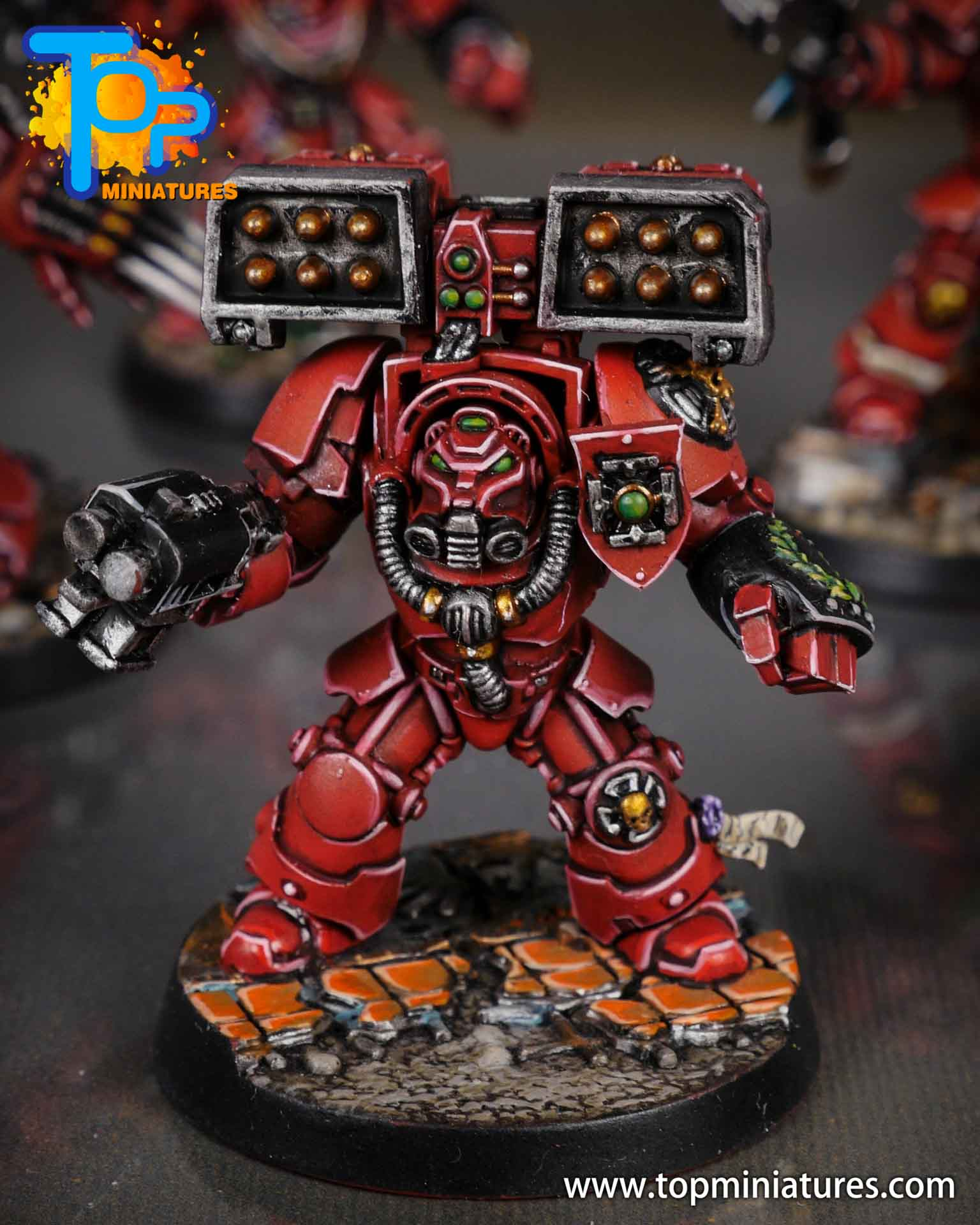 Space Marine Heroes - Blood Angels Terminators (14)