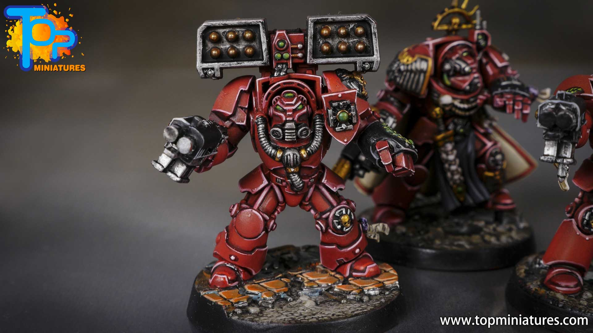 Space Marine Heroes - Blood Angels Terminators (19)