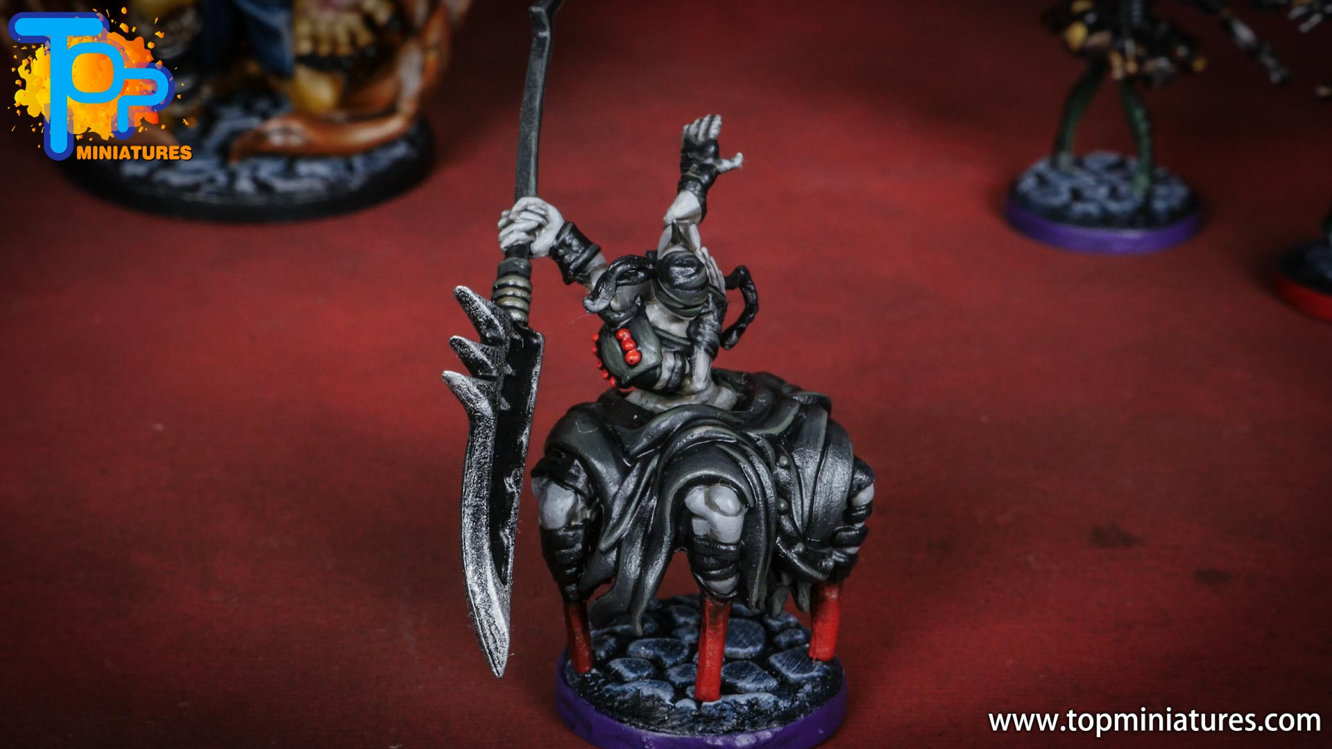 middara painted miniatures tortured immortal (2)