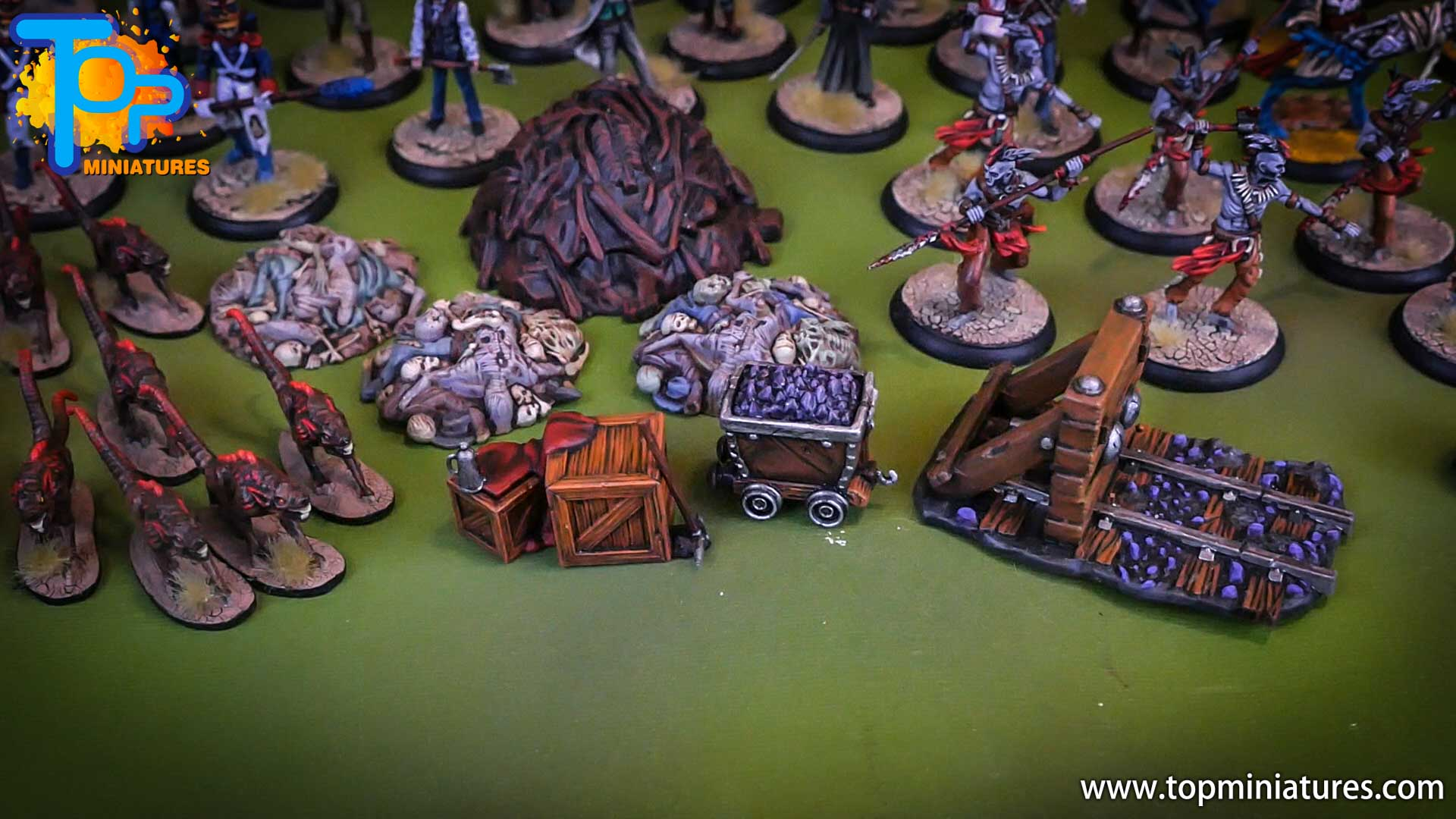 shadows of brimstone painted miniatures (11)
