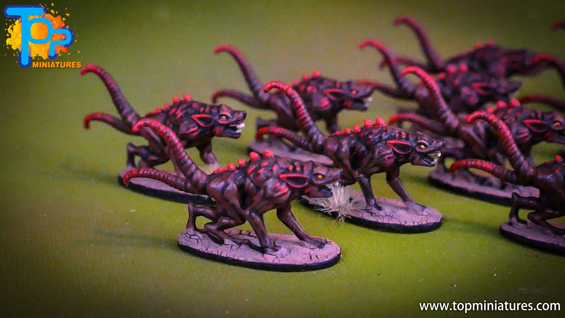 shadows of brimstone scourge rats (3)
