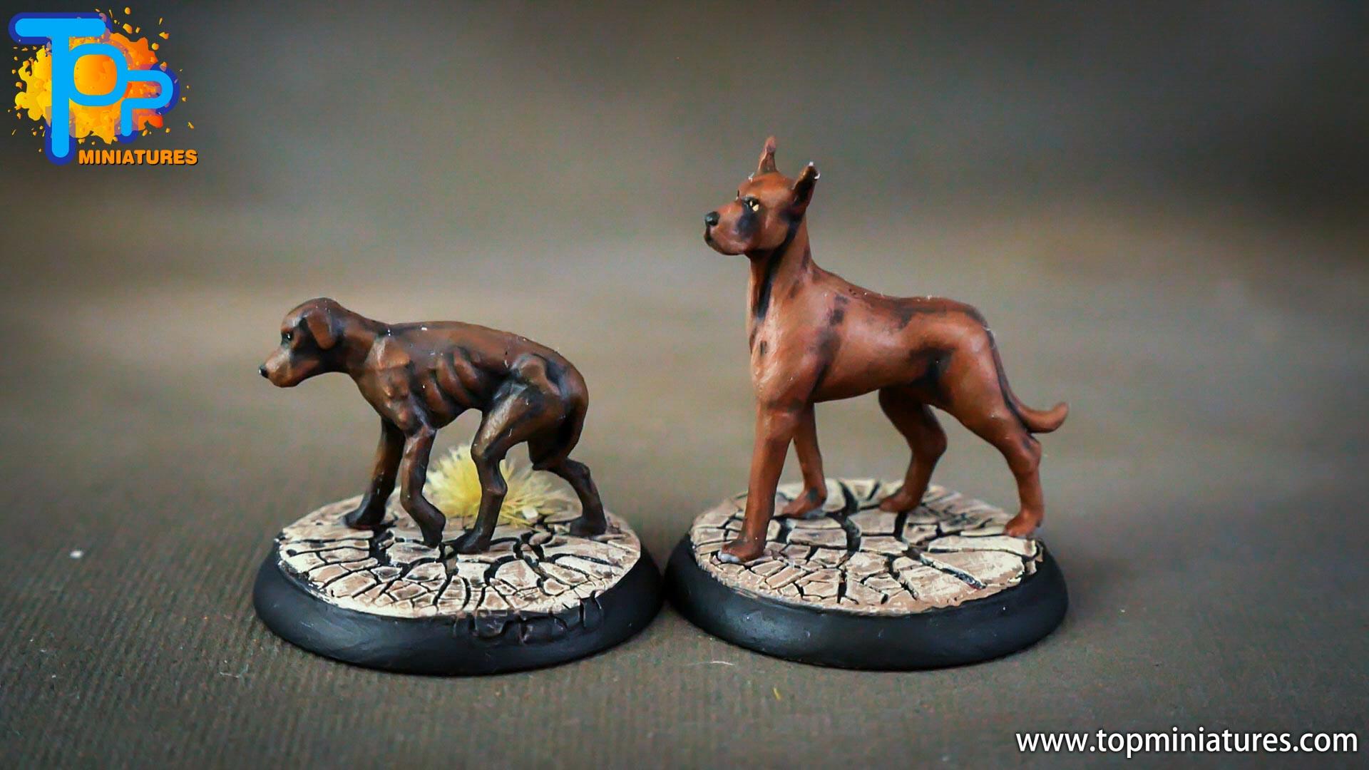 shadows of brimstone stray dogs