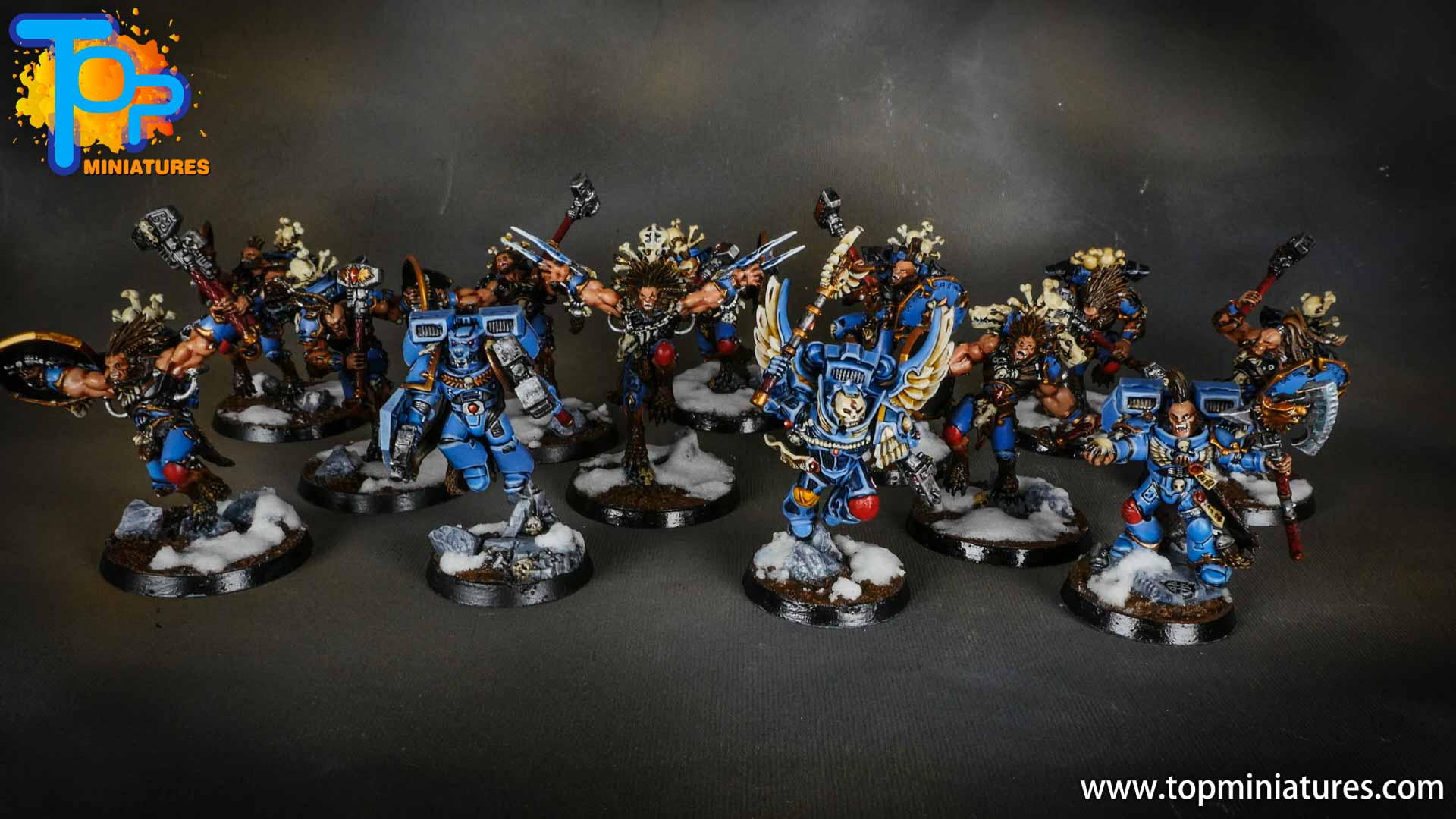 space wolves painted army (2)