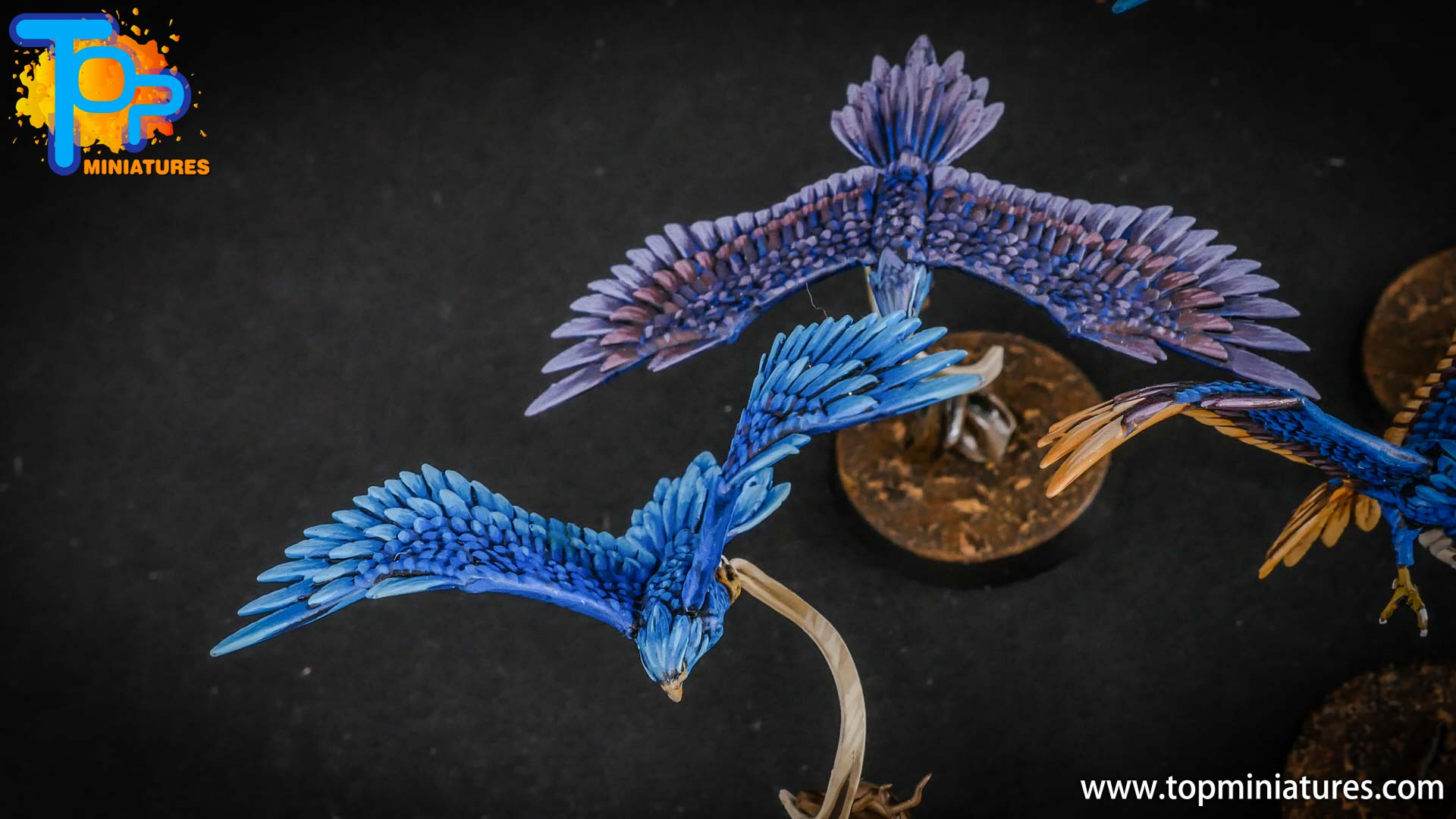 stormcast eternals painted aetherwings (2)