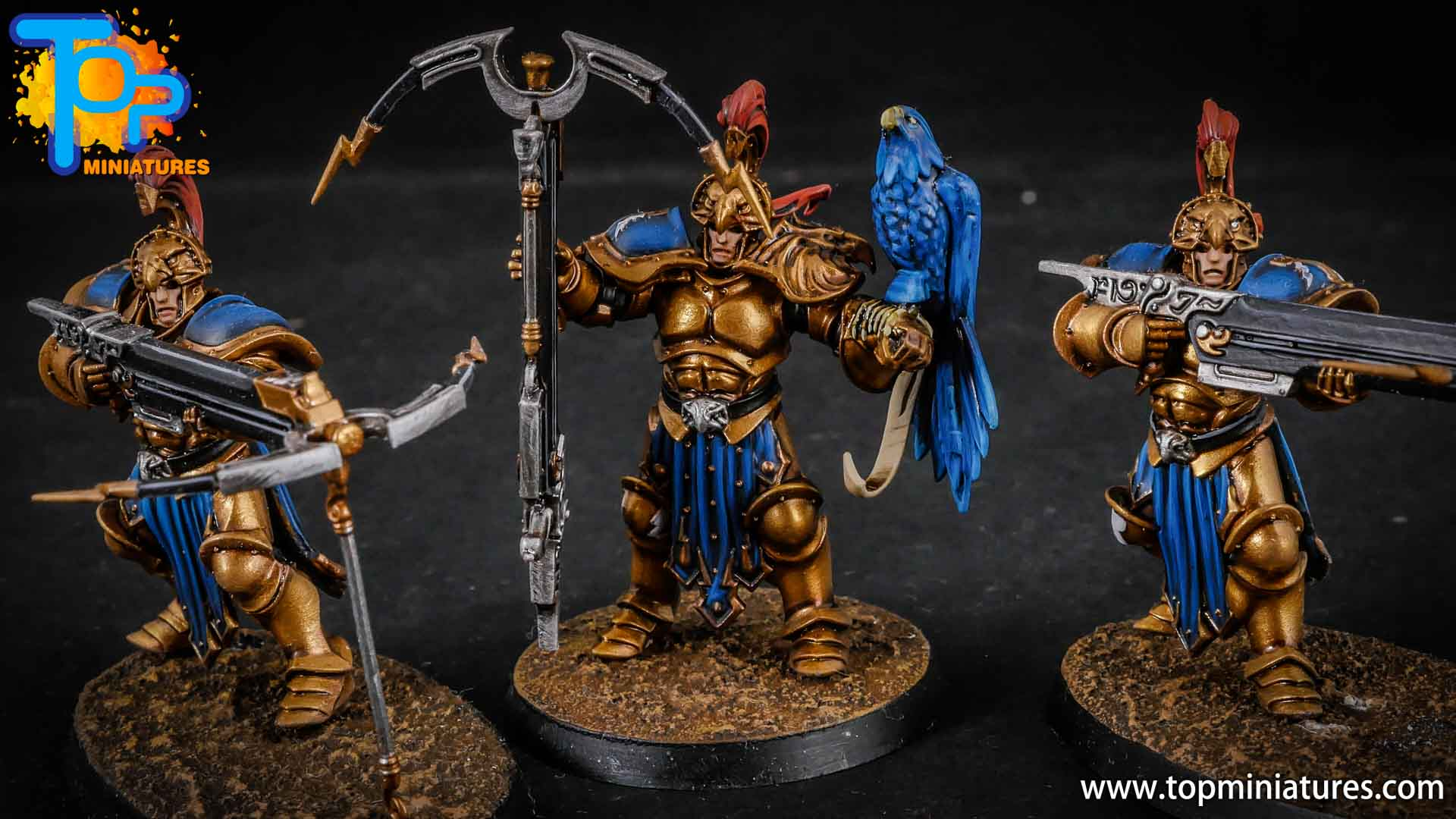 stormcast eternals painted vanguard raptors hunters (1)