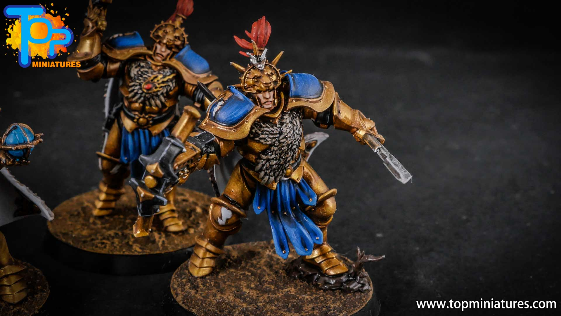 stormcast eternals painted vanguard raptors hunters (4)