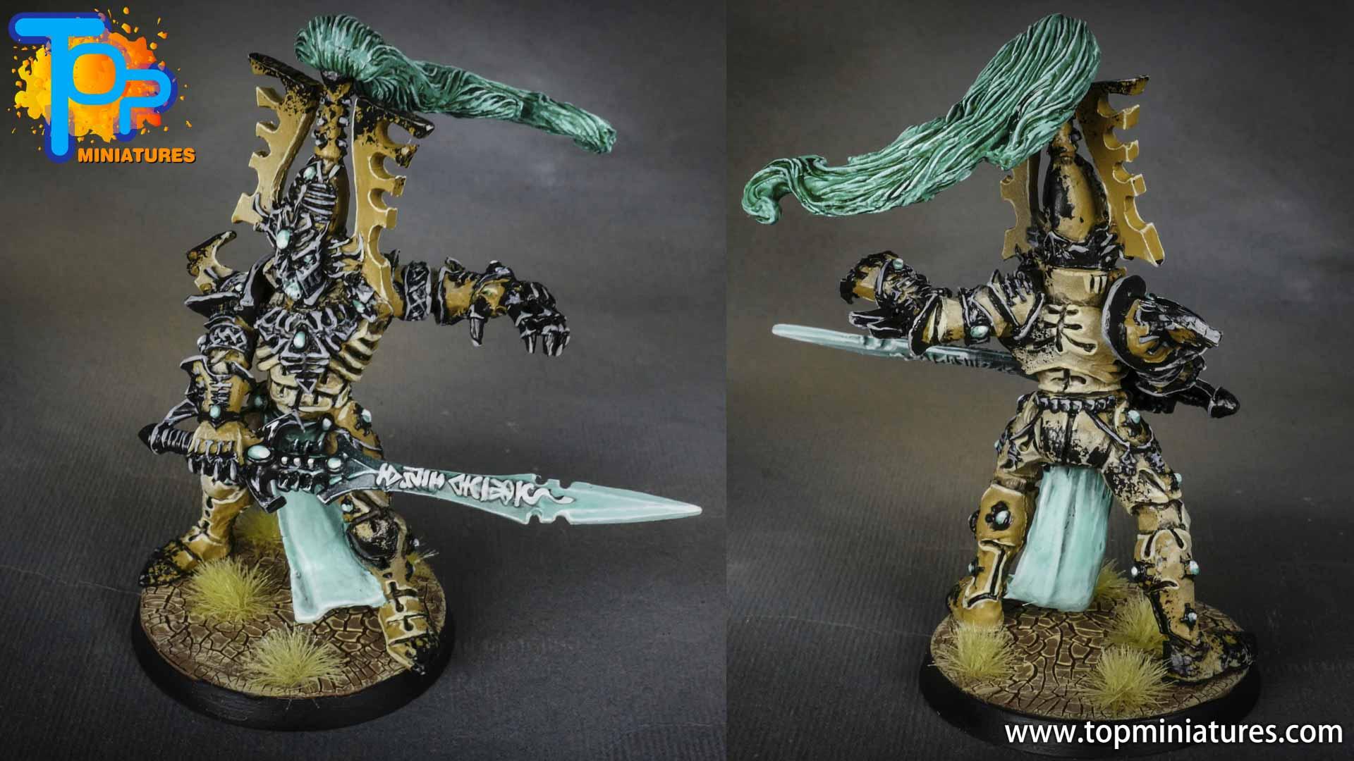 Eldar army painted avatar