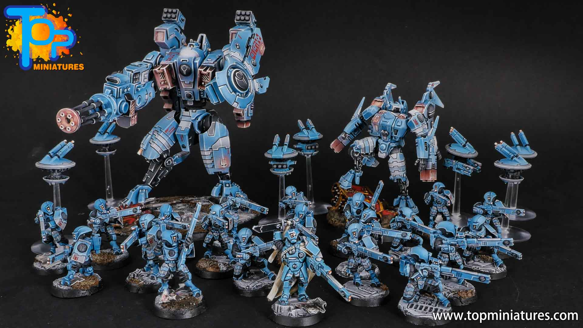 blue tau empire painted army