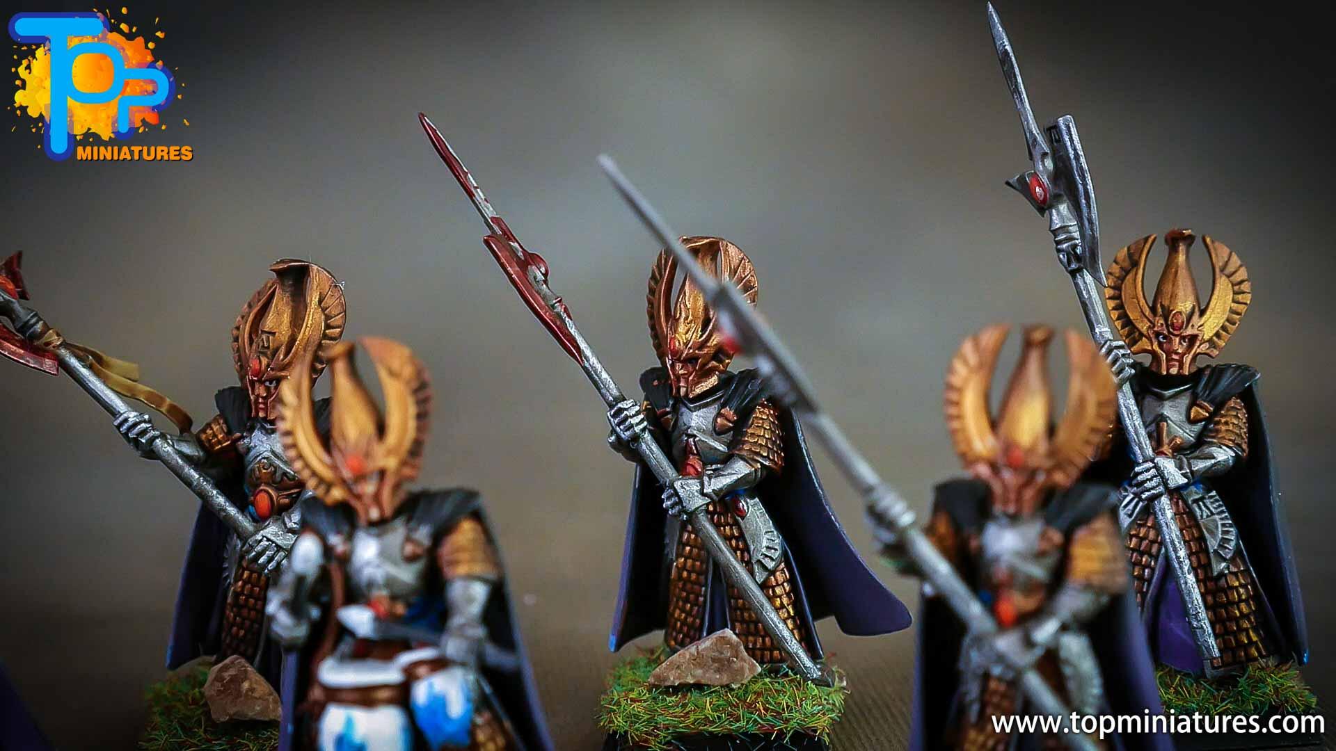 high elves painted phoenix guard (5)