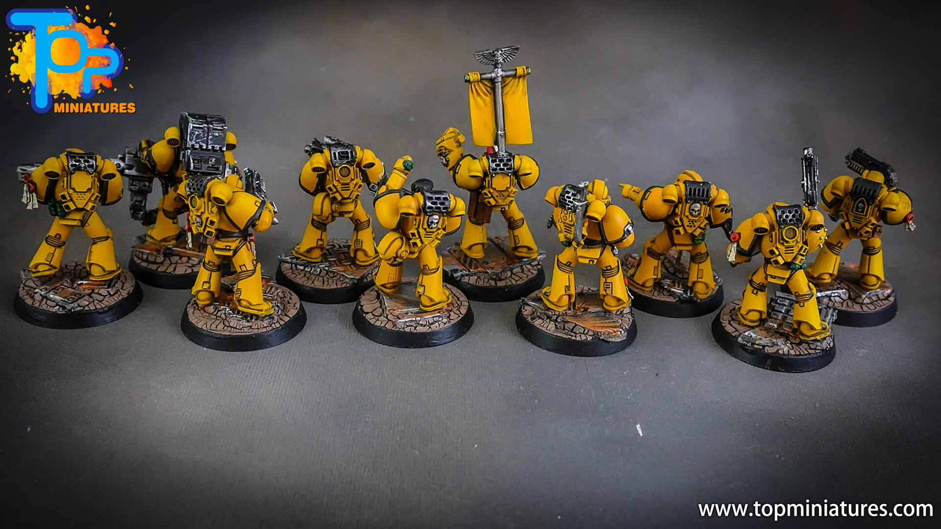 imperial fists tactical squad (1)
