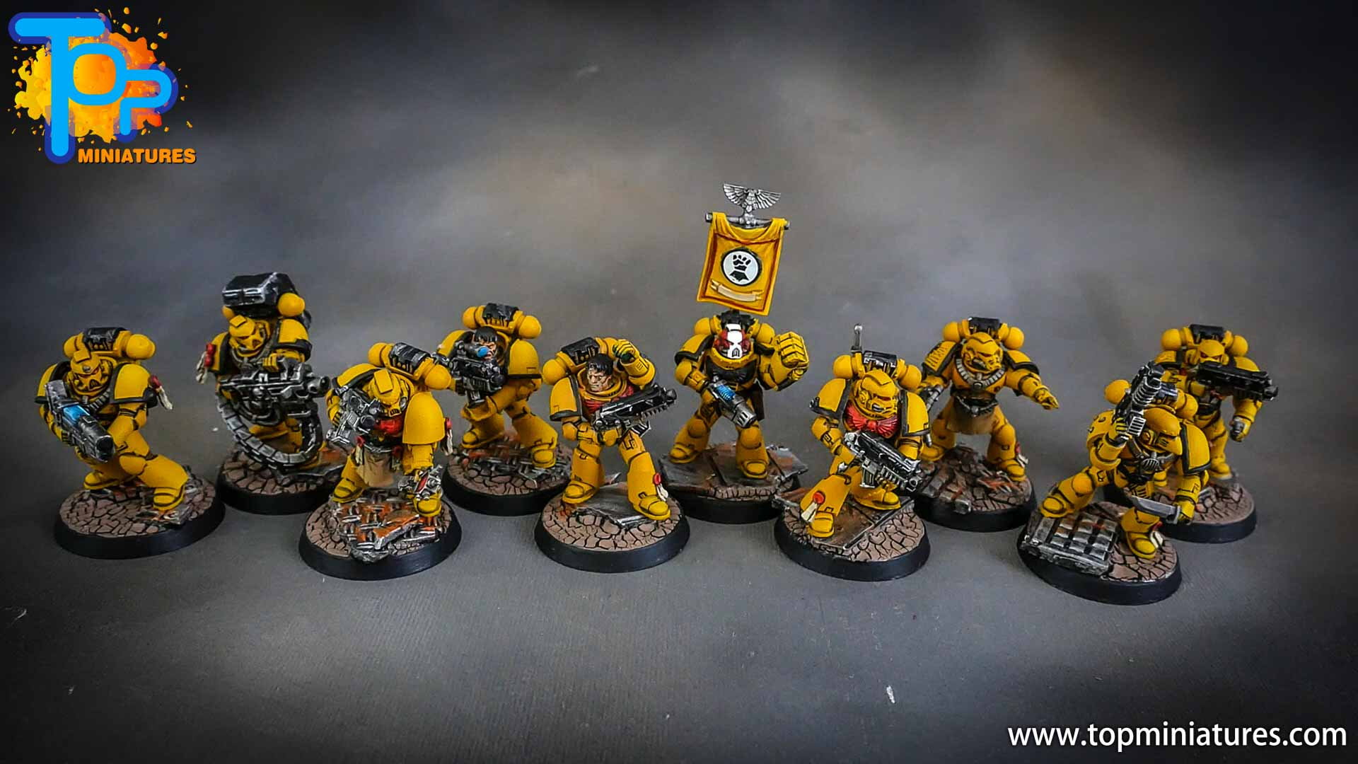 imperial fists tactical squad (10)