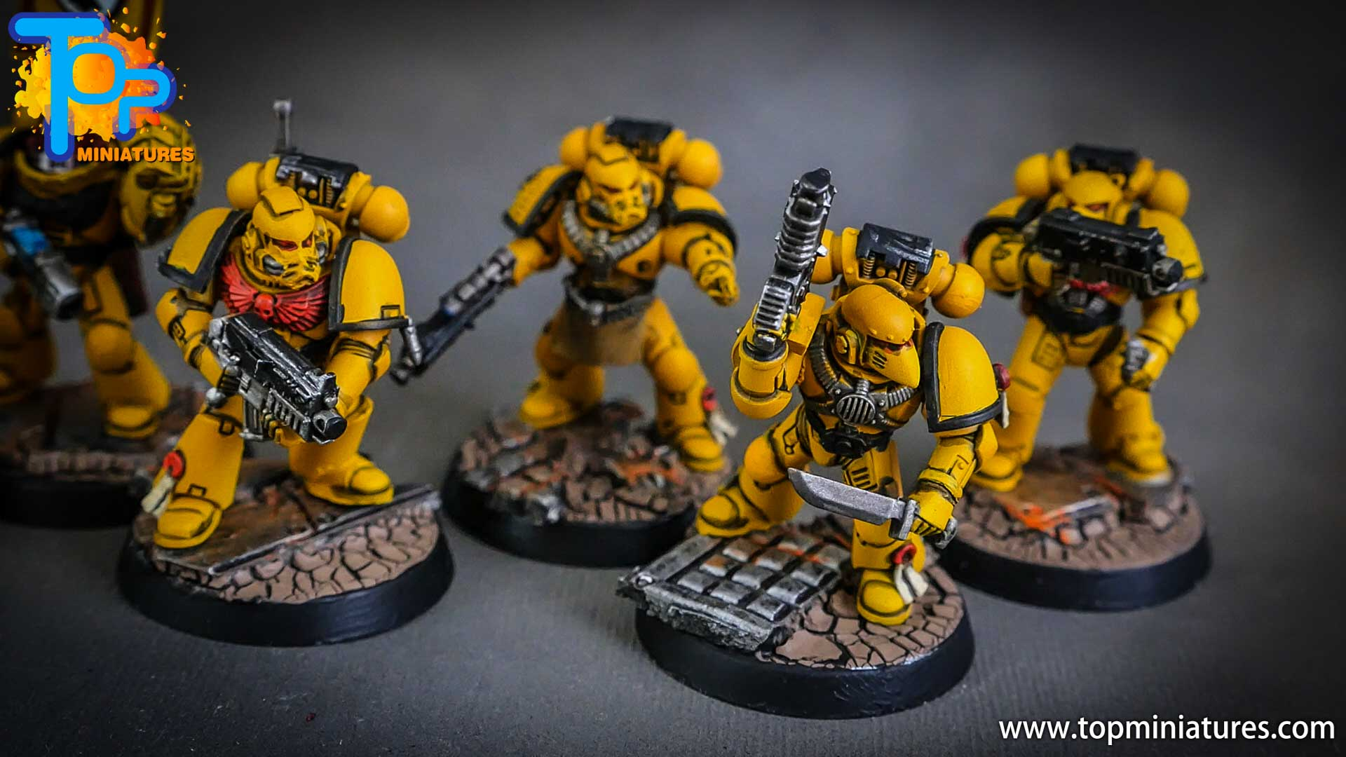 imperial fists tactical squad (13)