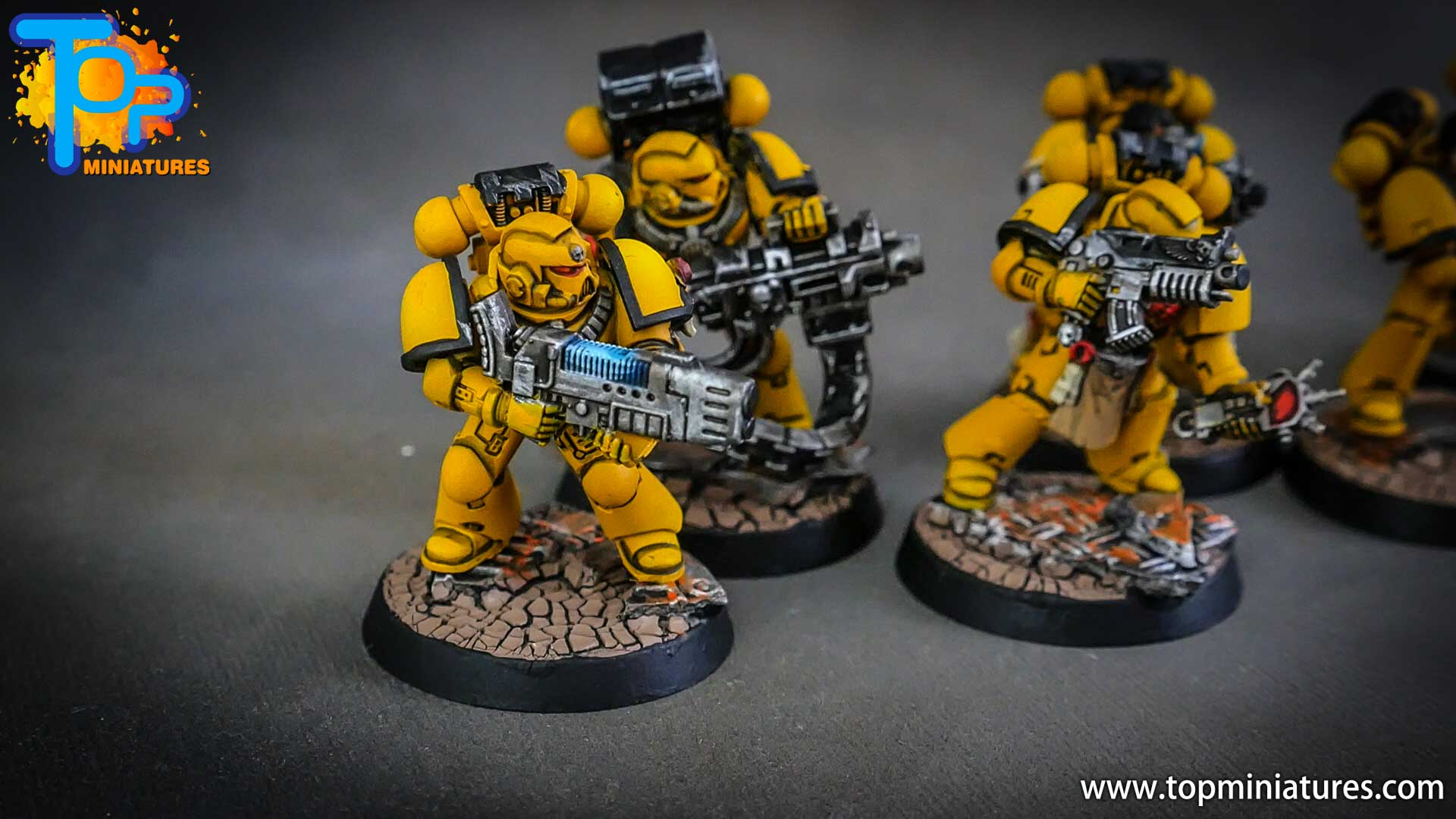 imperial fists tactical squad (14)