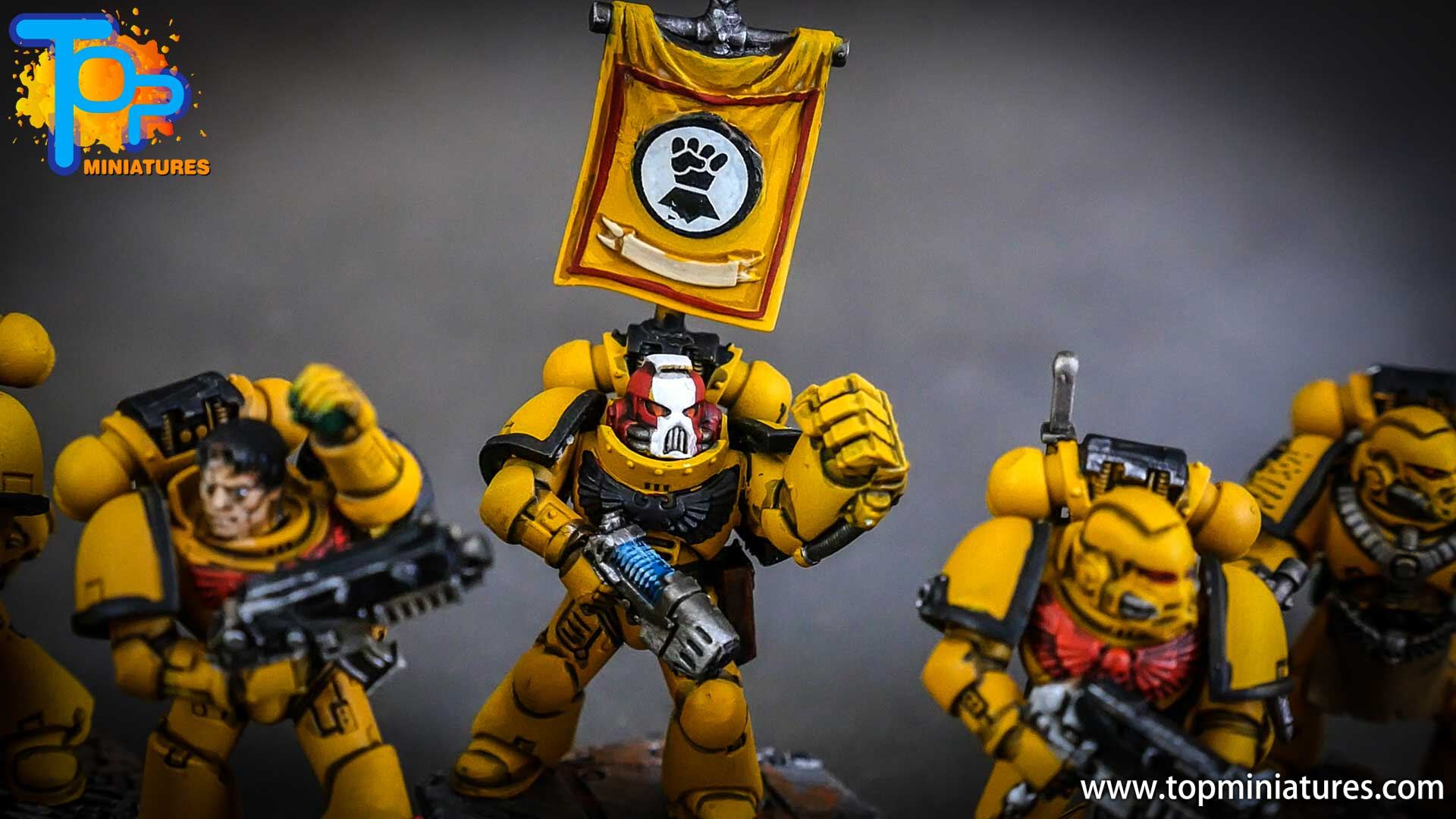 imperial fists tactical squad (8)