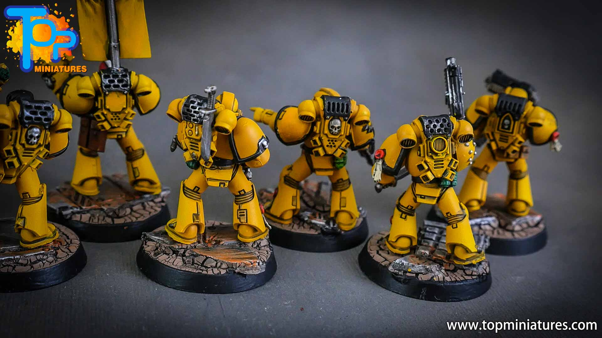 imperial fists tactical squad (9)