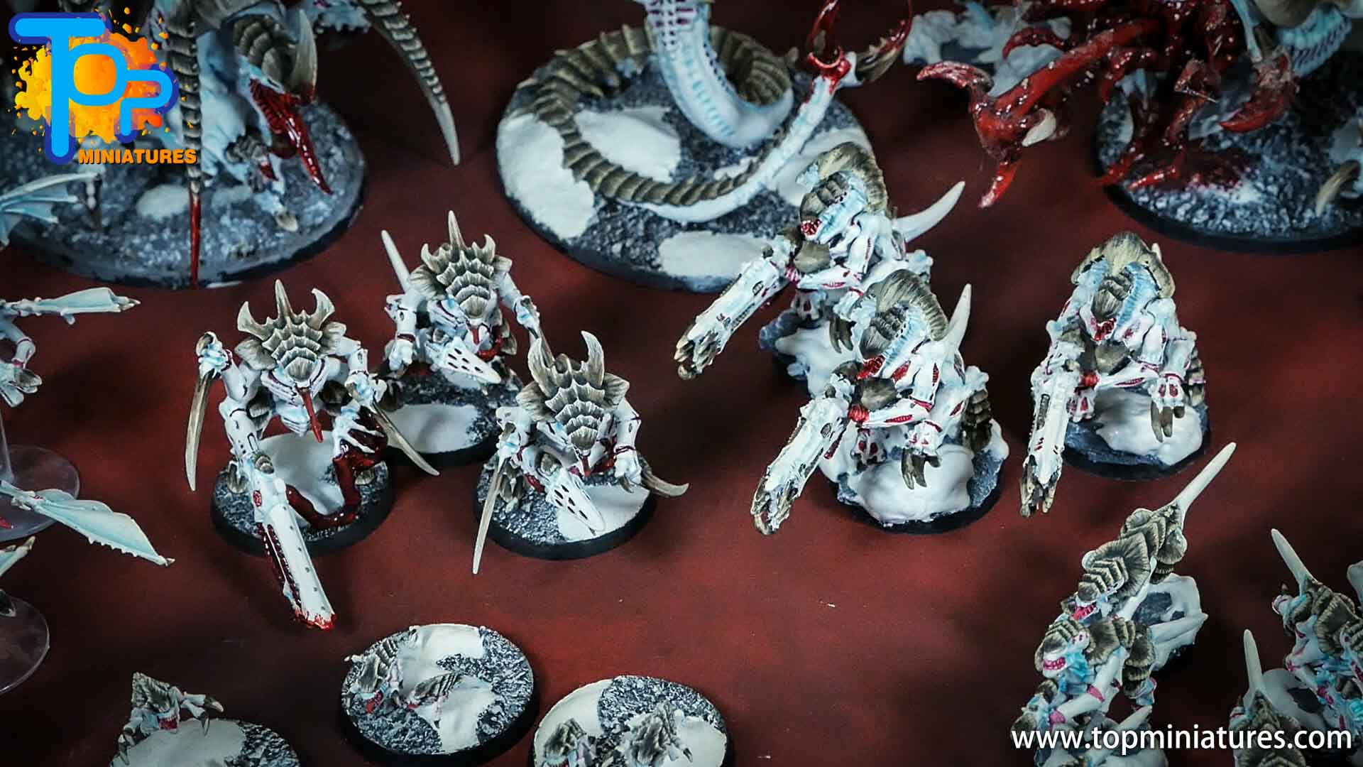snow white painted tyranid warriors (1)