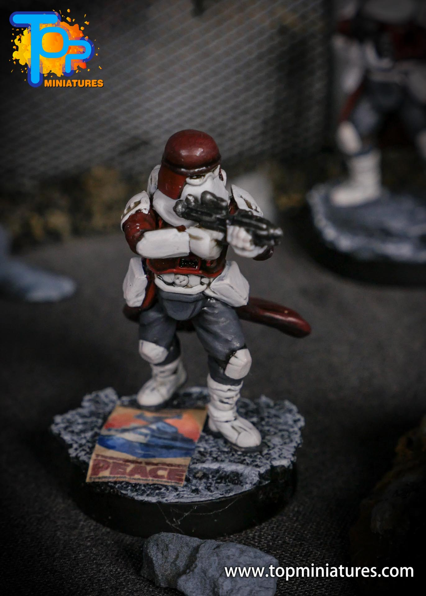 Star Wars Legion painted Snowtroopers (7)