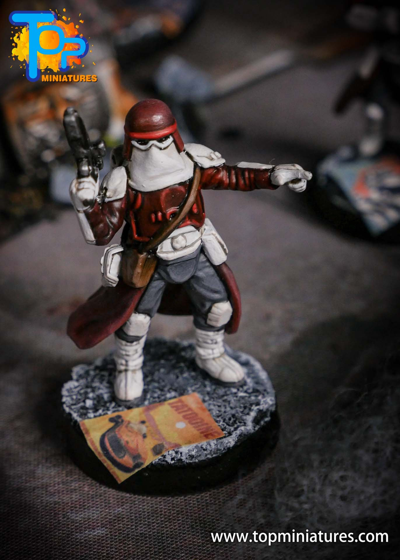 Star Wars Legion painted Snowtroopers (8)