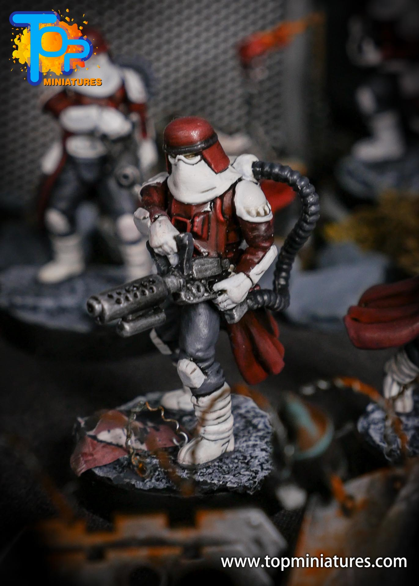 Star Wars Legion painted Snowtroopers (9)